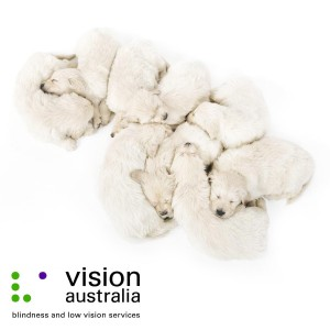 visions-australia-corporate-photography